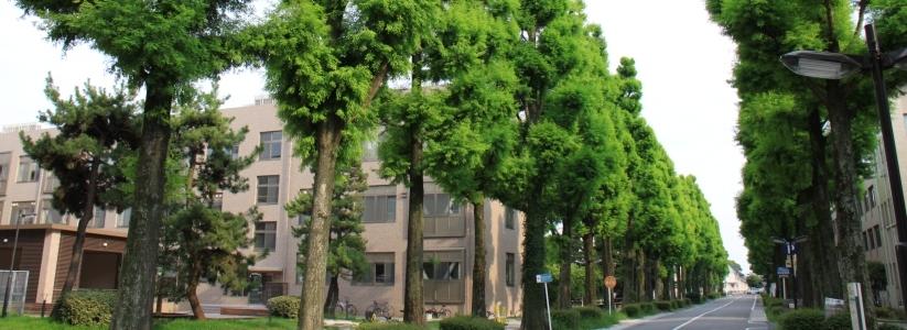 โครงการแลกเปลี่ยนนักศึกษา ณ Saga University ประเทศญี่ปุ่น